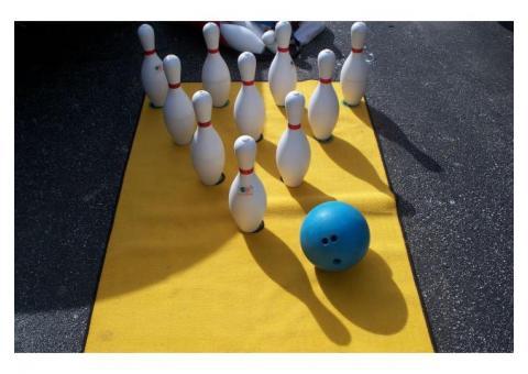 Carpet Bowling Lane